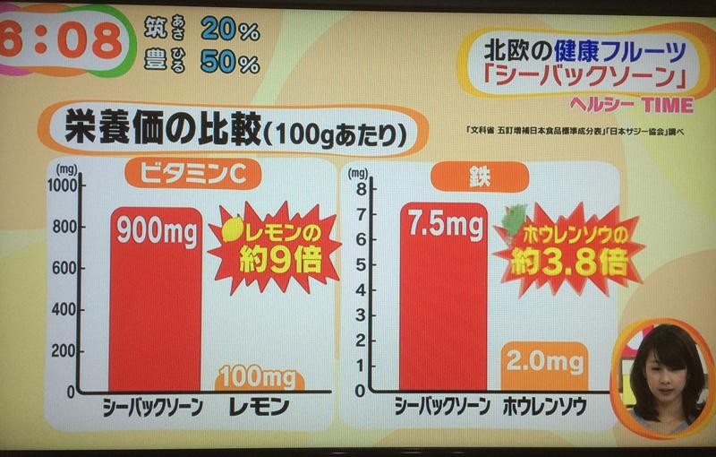 ビタミンCも鉄分もすごい!